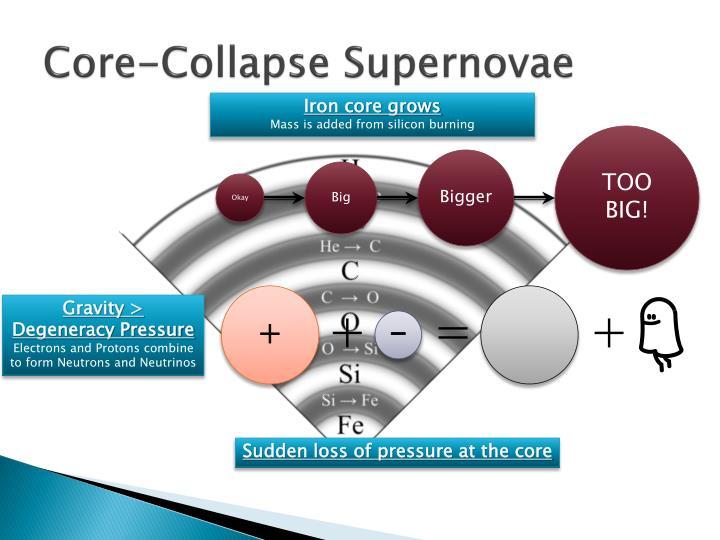 Core-Collapse Supernovae