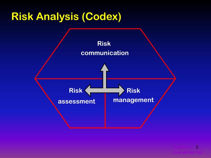 Risk Analysis (Codex)