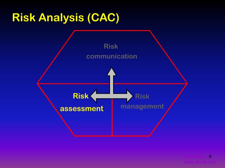 Risk Analysis (CAC)