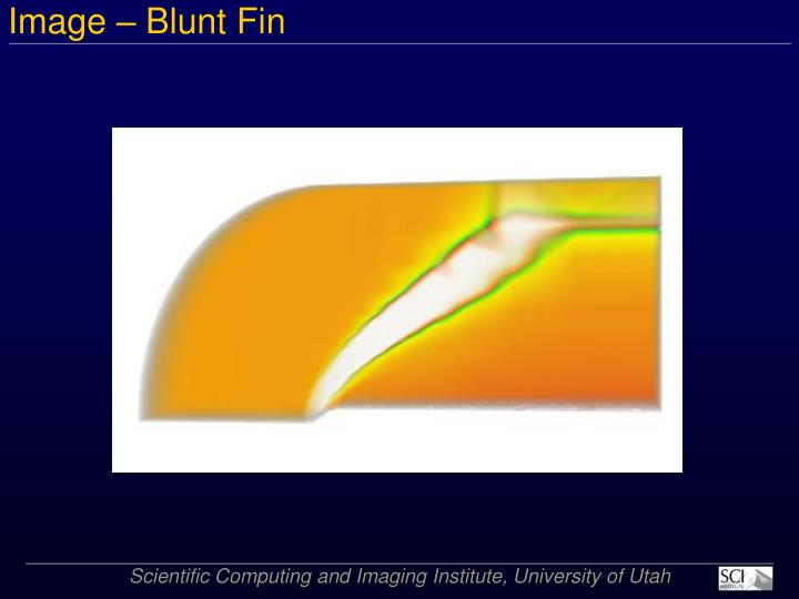 Image – Blunt Fin
