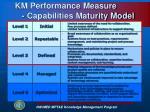 km performance measure capabilities maturity model