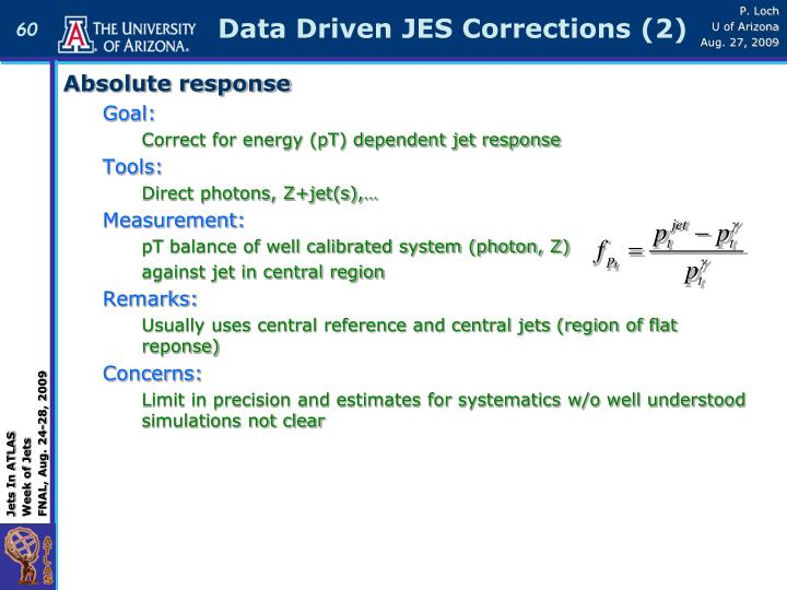 Data Driven JES Corrections (2)