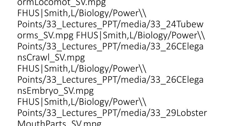 vti_cachedsvcrellinks:VX|FHUS|Smith,L/Biology/Power\ Points/33_Lectures_PPT/media/33_05HydraEating_SV.mpg FHUS|Smith,L/Biology/Power\ Points/33_Lectures_PPT/media/33_06HydraBudding_SV.mpg FHUS|Smith,L/Biology/Power\ Points/33_Lectures_PPT/media/33_06HydraSperm_SV.mpg FHUS|Smith,L/Biology/Power\ Points/33_Lectures_PPT/media/33_07bJellySwimming_SV.mpg FHUS|Smith,L/Biology/Power\ Points/33_Lectures_PPT/media/33_07bThimbleJellies_SV.mpg FHUS|Smith,L/Biology/Power\ Points/33_Lectures_PPT/media/33_07dClownfishAnemone_SV.mpg FHUS|Smith,L/Biology/Power\ Points/33_Lectures_PPT/media/33_07dCoralReef_SV.mpg FHUS|Smith,L/Biology/Power\ Points/33_Lectures_PPT/media/33_13Rotifer_SV.mpg FHUS|Smith,L/Biology/Power\ Points/33_Lectures_PPT/media/33_18bNudibranchs_SV.mpg FHUS|Smith,L/Biology/Power\ Points/33_Lectures_PPT/media/33_23EarthwormLocomot_SV.mpg FHUS|Smith,L/Biology/Power\ Points/33_Lectures_PPT/media/33_24Tubeworms_SV.mpg FHUS|Smith,L/Biology/Power\ Points/33_Lectures_PPT/media/33_26CElegansCrawl_SV.mpg FHUS|Smith,L/Biology/Power\ Points/33_Lectures_PPT/media/33_26CElegansEmbryo_SV.mpg FHUS|Smith,L/Biology/Power\ Points/33_Lectures_PPT/media/33_29LobsterMouthParts_SV.mpg FHUS|Smith,L/Biology/Power\ Points/33_Lectures_PPT/media/33_36ButterflyEmerge_SV.mpg FHUS|Smith,L/Biology/Power\ Points/33_Lectures_PPT/media/33_37BeePollinating_SV.mpg FHUS|Smith,L/Biology/Power\ Points/33_Le