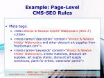 example page level cms seo rules