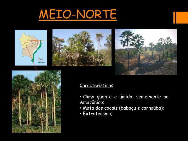 MEIO-NORTE