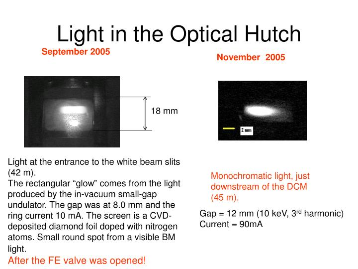 Light in the Optical Hutch