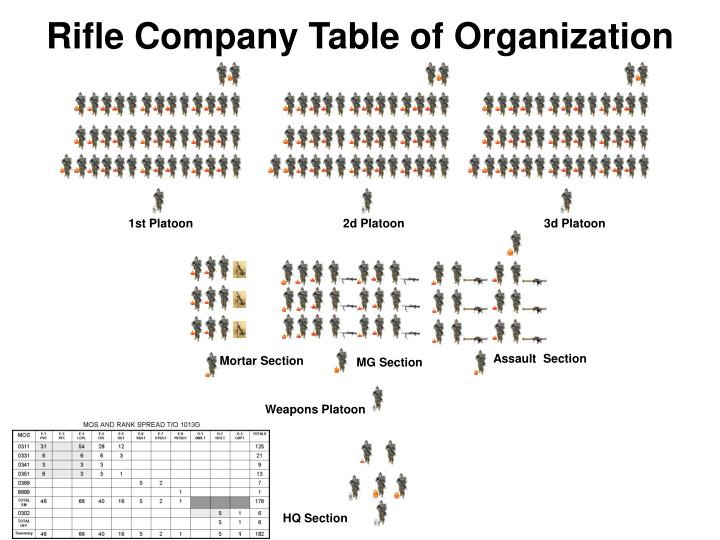 Rifle Company Table of Organization