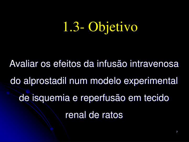 1.3- Objetivo