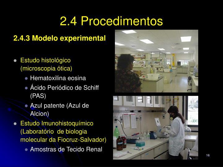2.4 Procedimentos