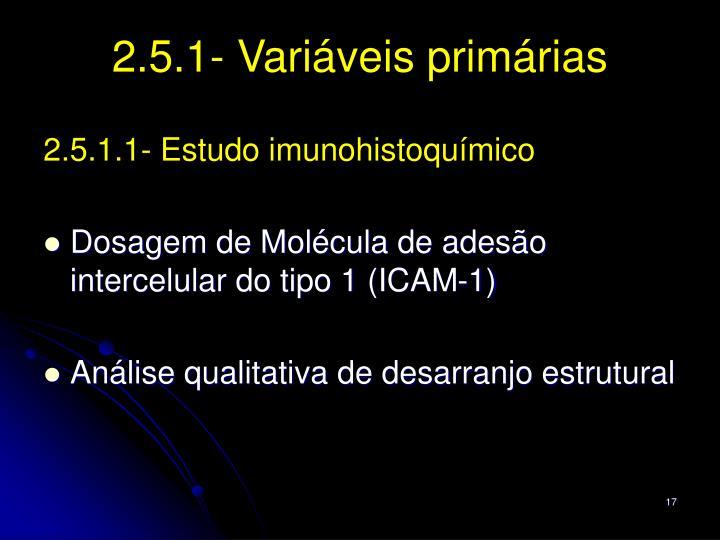 2.5.1- Variáveis primárias