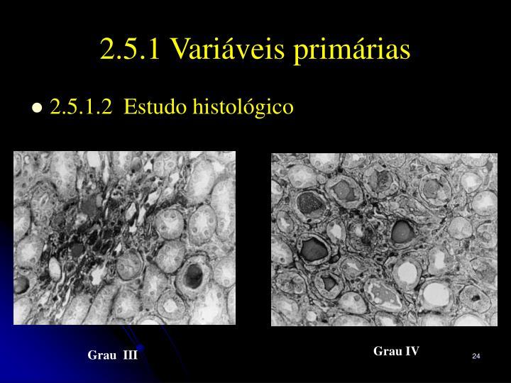 2.5.1 Variáveis primárias