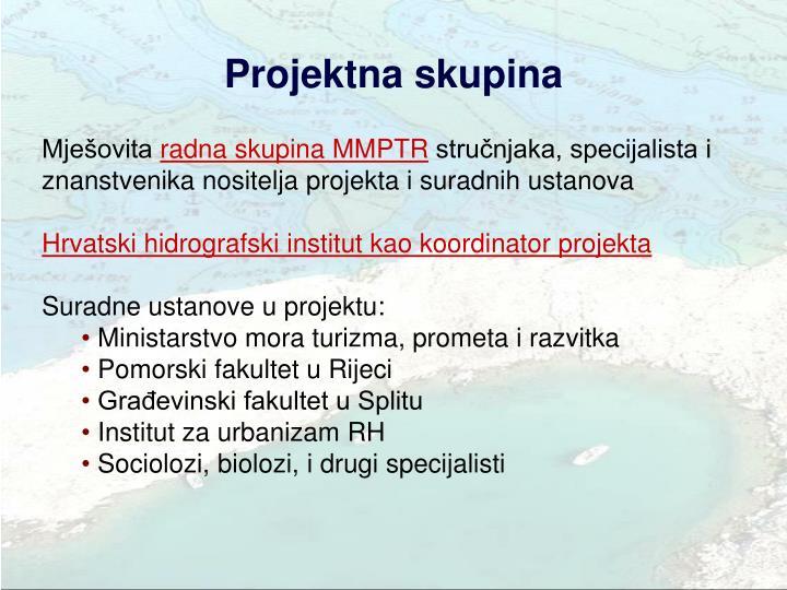 Projektna skupina