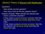 darwin s theory of descent with modification