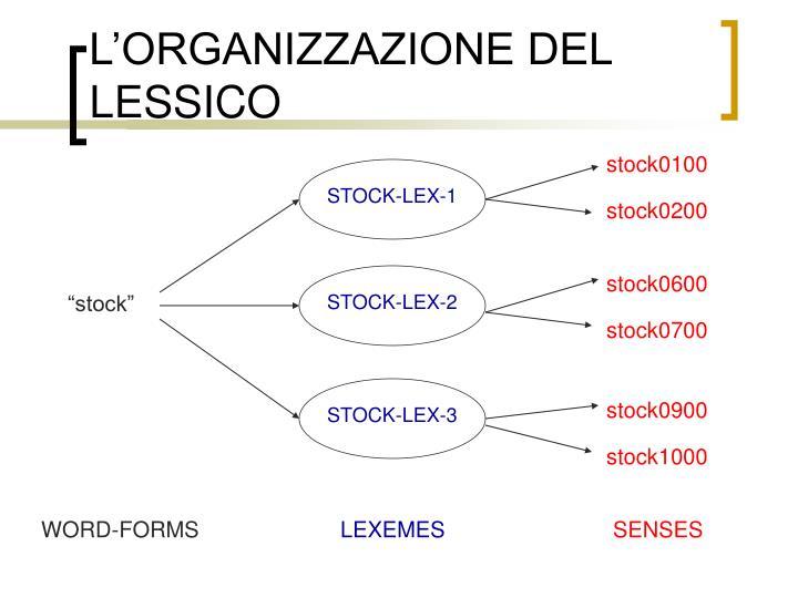 STOCK-LEX-1