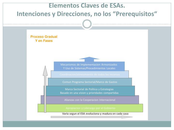Elementos Claves de ESAs.