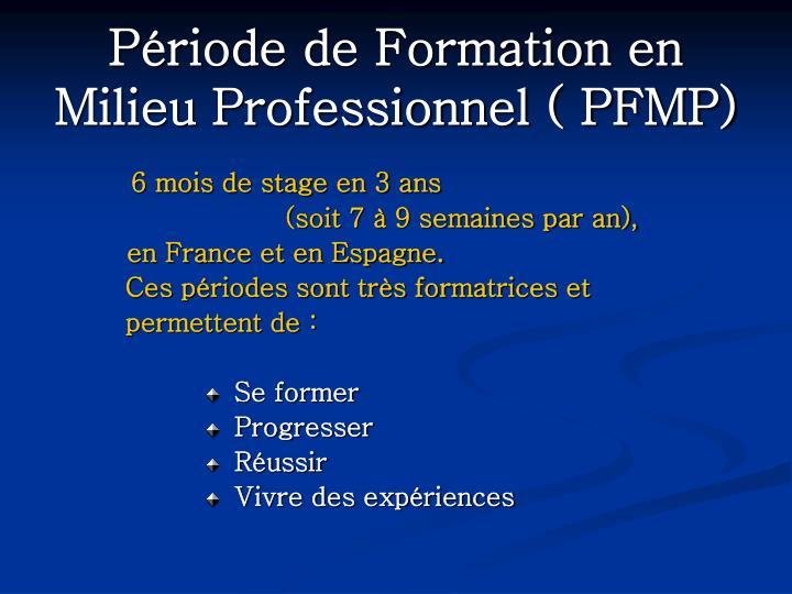 Période de Formation en Milieu Professionnel ( PFMP)