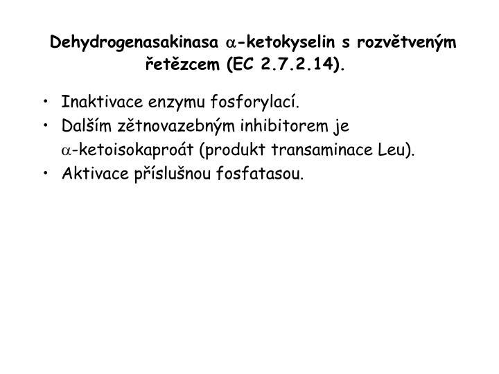 Dehydrogenasakinasa