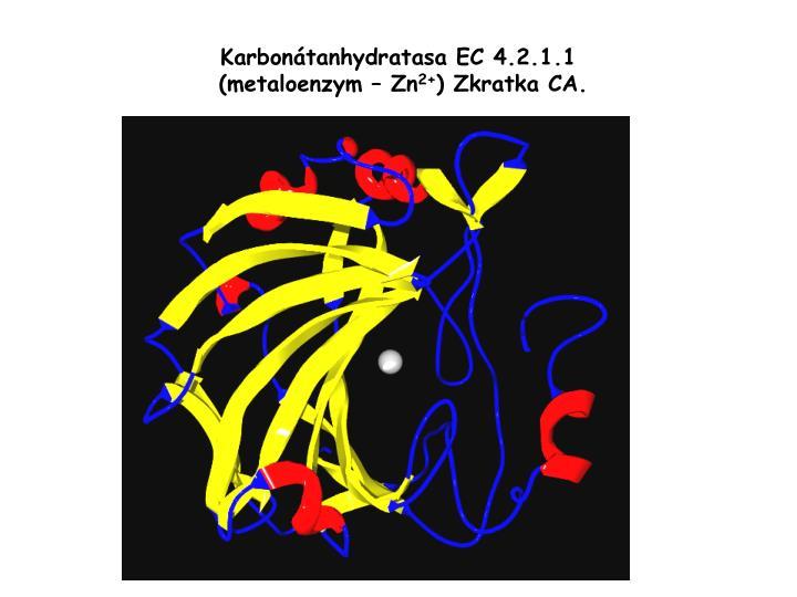 Karbonátanhydratasa EC 4.2.1.1
