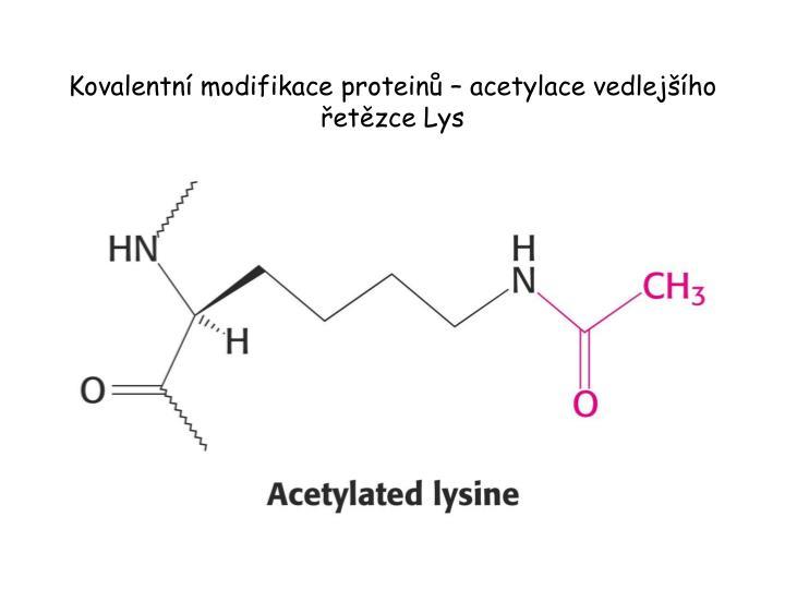Kovalentní modifikace proteinů – acetylace vedlejšího řetězce Lys