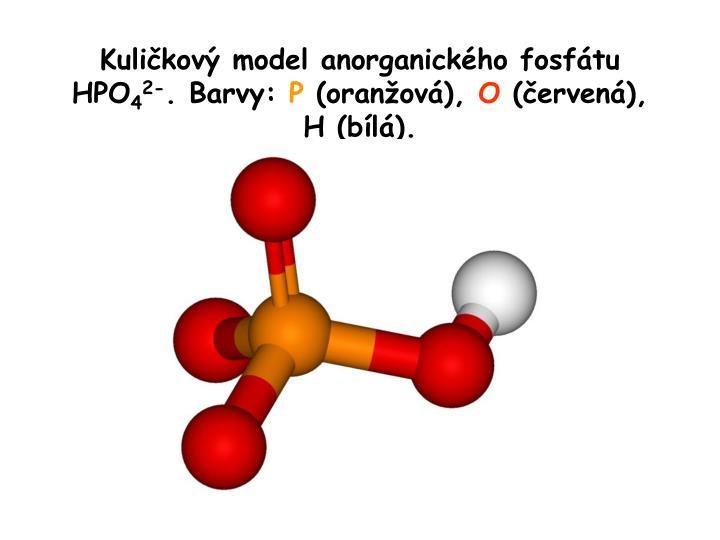 Kuličkový model anorganického fosfátu HPO