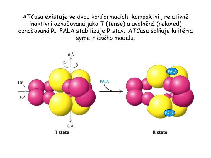 ATCasa existuje ve dvou konformacích: kompaktní , relativně inaktivní označovaná jako T (tense) a uvolněná (relaxed) označovaná R.  PALA stabilizuje R stav.