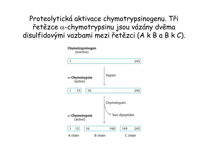 Proteolytická aktivace chymotrypsinogenu. Tři řetězce