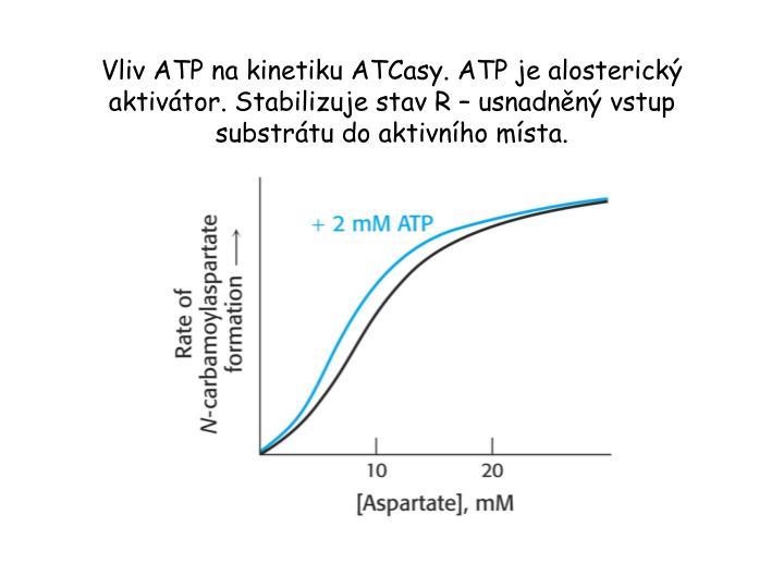 Vliv ATP na kinetiku ATCasy. ATP je alosterický aktivátor. Stabilizuje stav R – usnadněný vstup substrátu do aktivního místa.