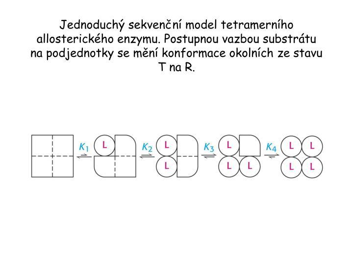 Jednoduchý sekvenční model tetramerního allosterického enzymu. Postupnou vazbou substrátu na podjednotky se mění konformace okolních ze stavu T na R.