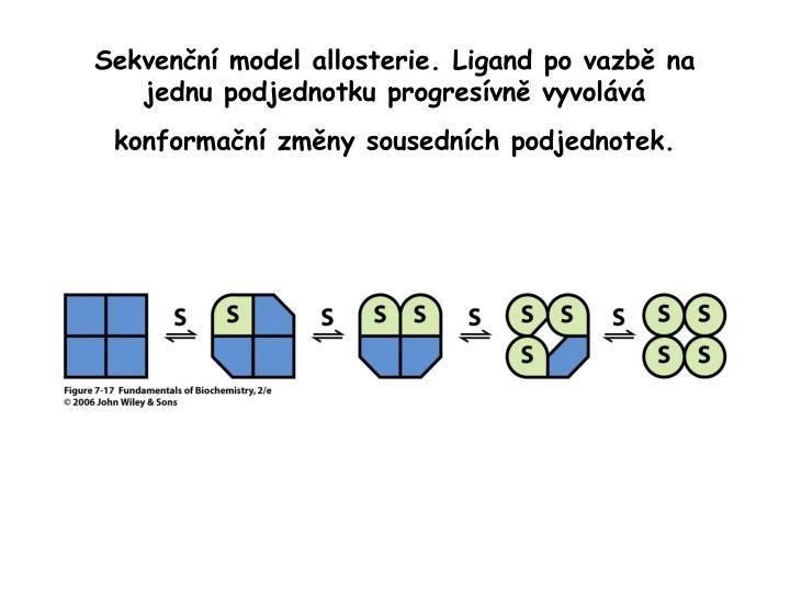 Sekvenční model allosterie. Ligand po vazbě na jednu podjednotku progresívně vyvolává konformační změny sousedních podjednotek.