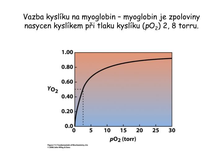 Vazba kyslíku na myoglobin – myoglobin je zpoloviny nasycen kyslíkem při tlaku kyslíku (