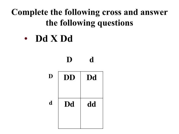 Complete the following cross and answer the following questions