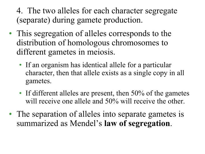 4.  The two alleles for each character segregate (separate) during gamete production.