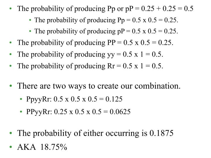 The probability of producing Pp or pP = 0.25 + 0.25 = 0.5