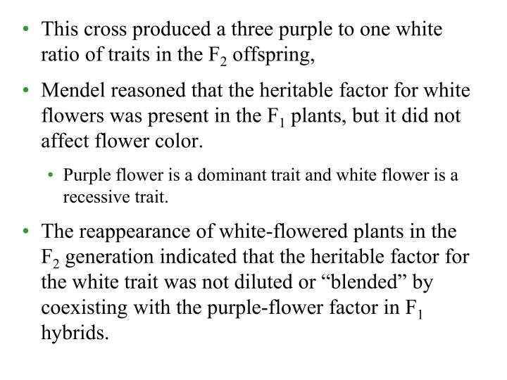 This cross produced a three purple to one white ratio of traits in the F