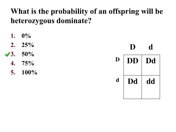 What is the probability of an offspring will be heterozygous dominate?