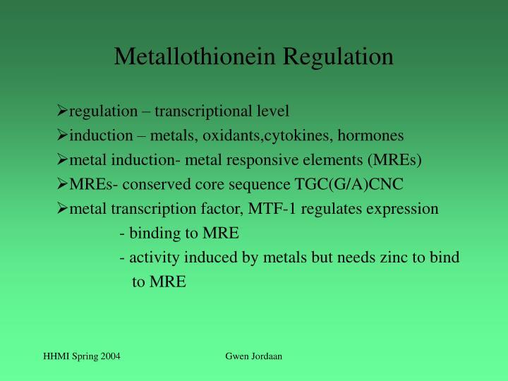 Metallothionein Regulation