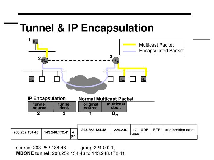 Tunnel & IP Encapsulation