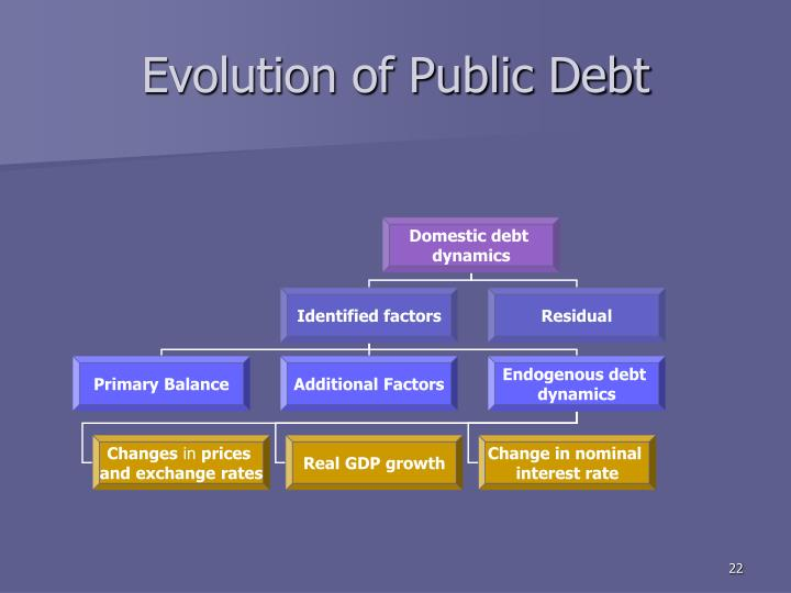 Evolution of Public Debt