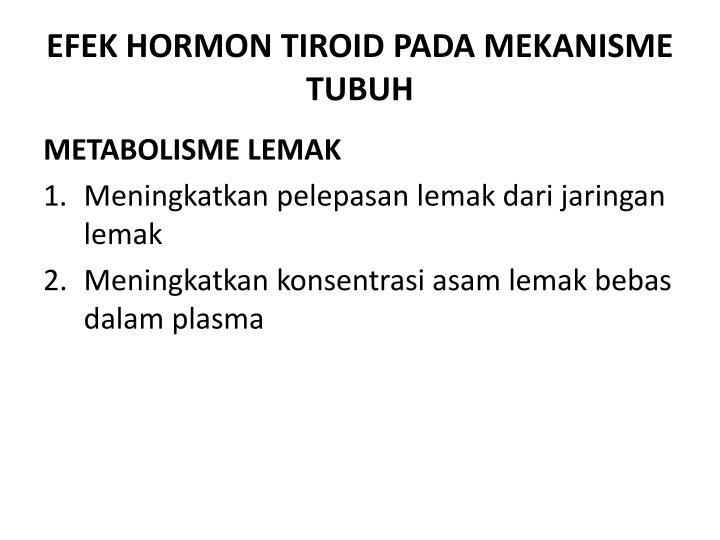 EFEK HORMON TIROID PADA MEKANISME TUBUH