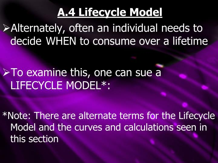 A.4 Lifecycle Model