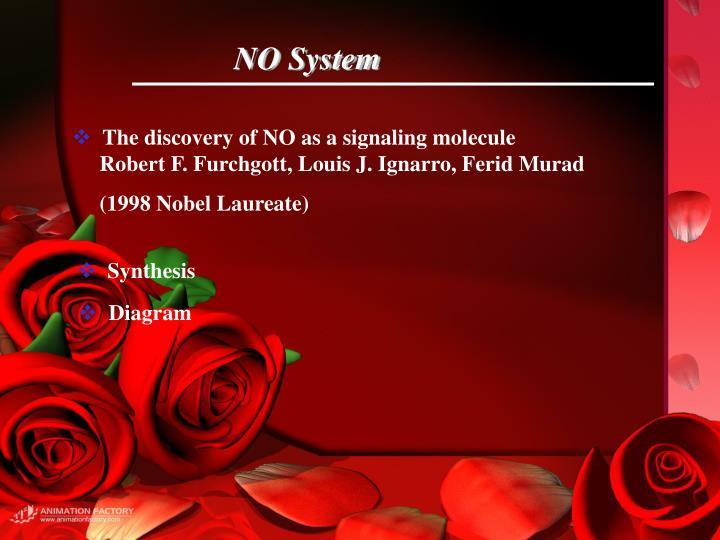 NO System