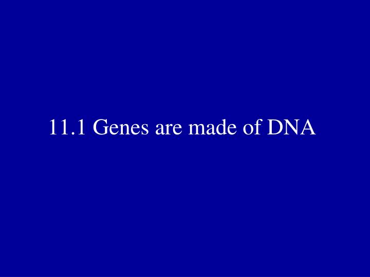 11 1 genes are made of dna