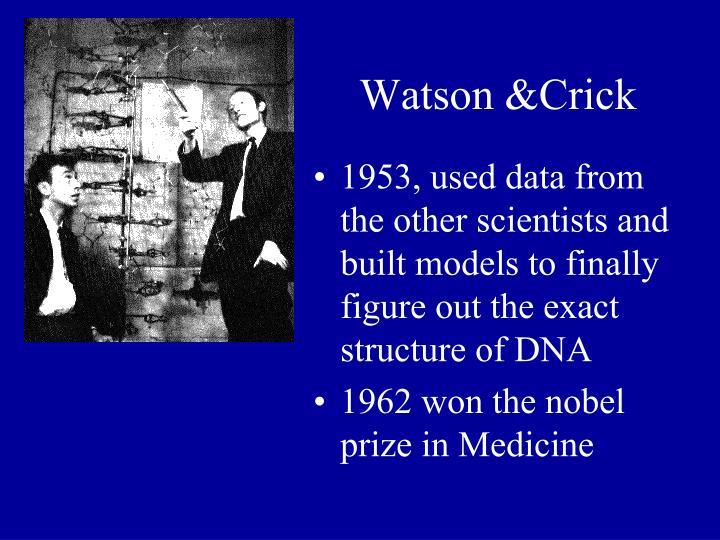 Watson &Crick