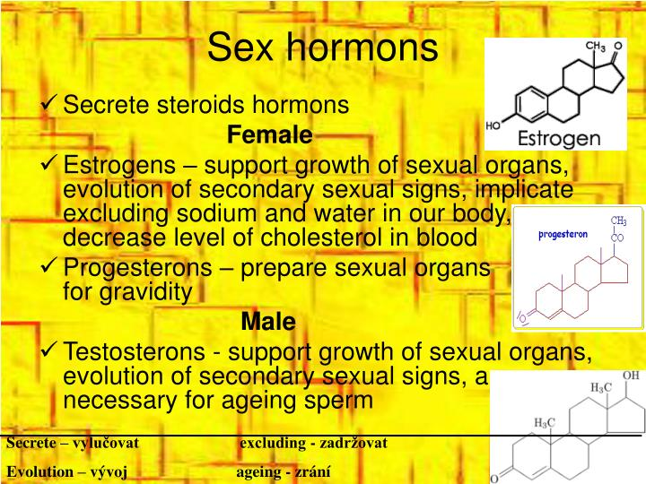 Sex hormons