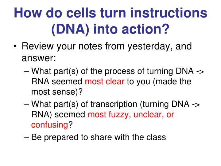 How do cells turn instructions (DNA) into action?