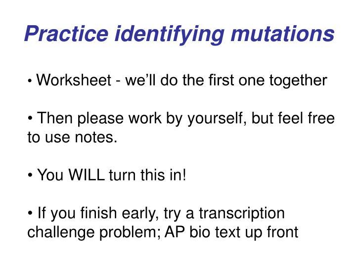 Practice identifying mutations