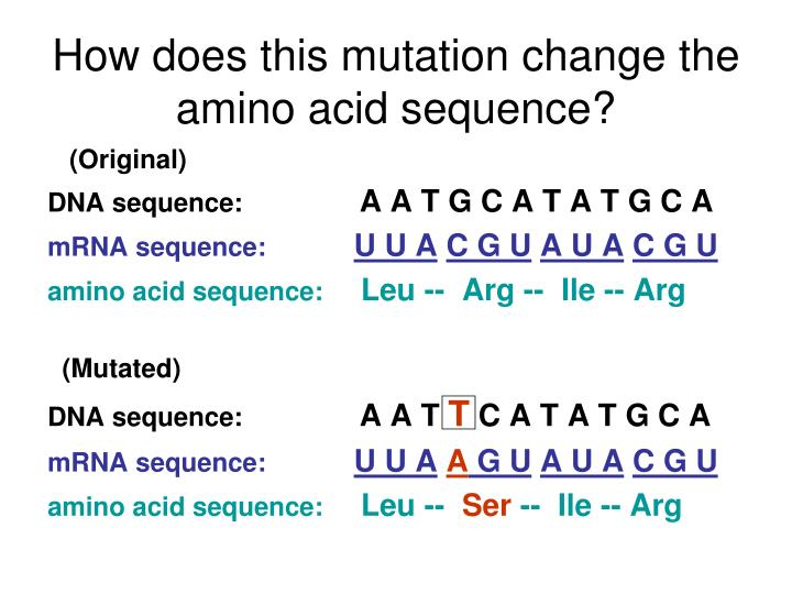 How does this mutation change the amino acid sequence?