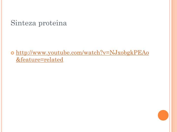 Sinteza proteina