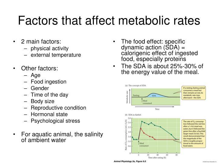 2 main factors: