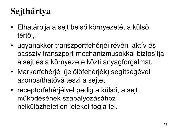 Sejthártya